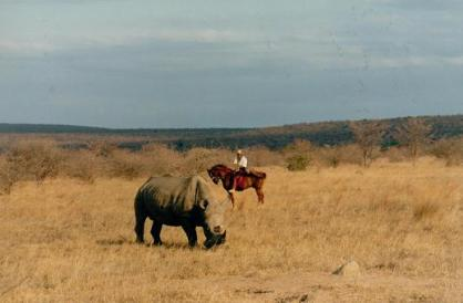 Sophie Neville at Touchstone with white rhino