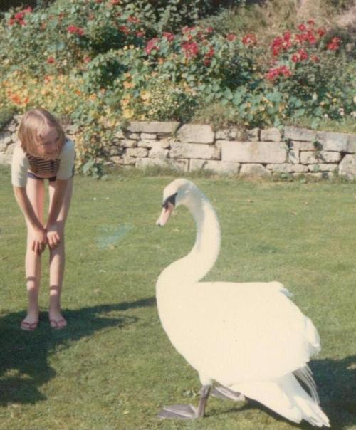 Sophie Neville in 1973, in the garden at home with a swan