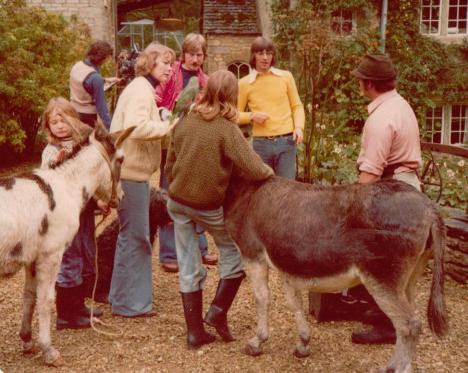 Animal Magic with our donkeys