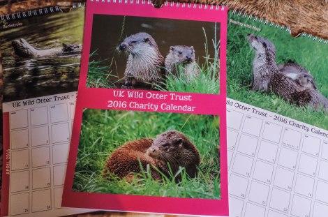 UK Wild Otter Trust CALENDAR 2016