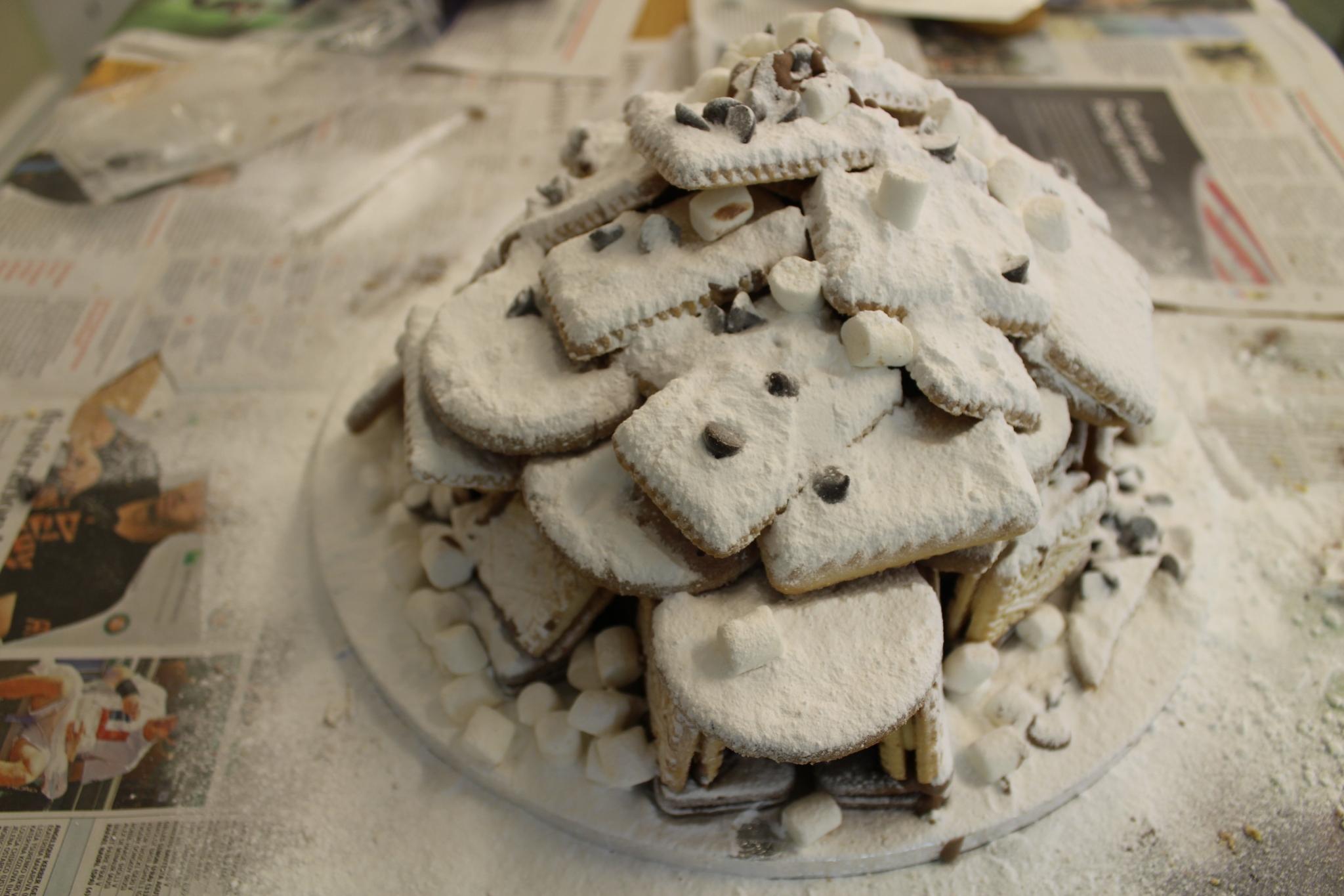 Winter holiday cake - the igloo