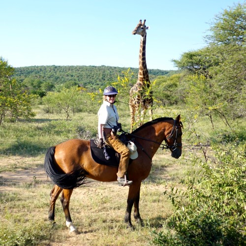 TWT Ride 2018 Sophie Neville with giraffe at Ant's Nest - photo Ant Baber