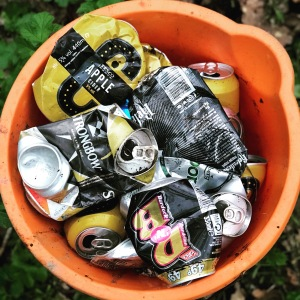 rubbish tins