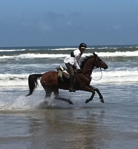 Sophie riding on the wild coast 2018