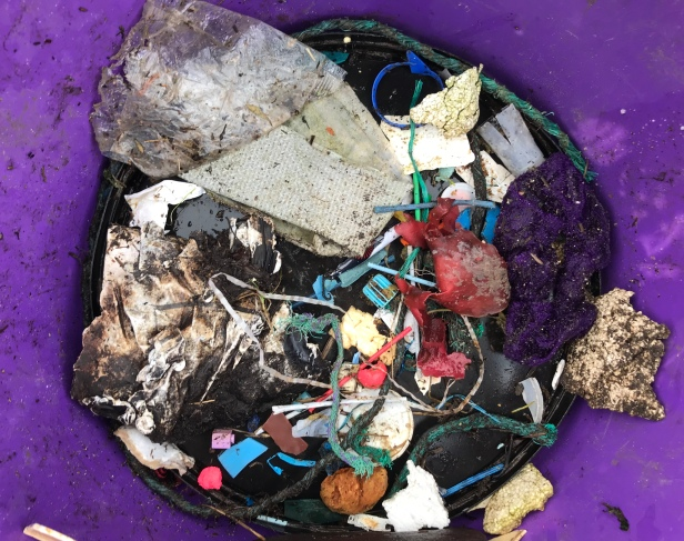 Rubbish bucket with Solent plastics wased up in a week