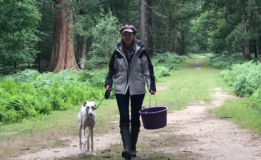 Author Sophie Neville collecting litter in the New Forest